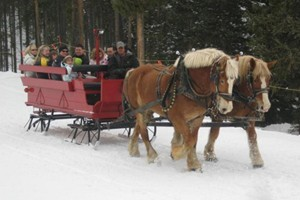 Breckenridge Ski Resort :: Hear the sleigh bells ringing in the crisp mountain air with snow falling. Enjoy a delicious dinner on the mountain or just journey in the breathtaking beauty.