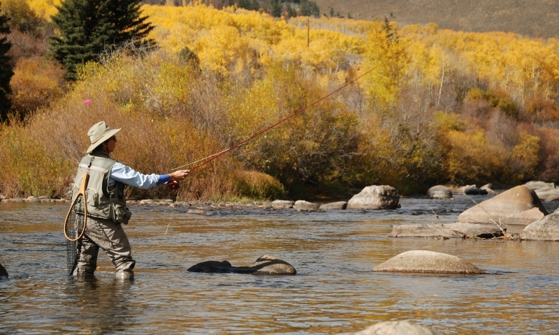 Fly Fishing the Blue River