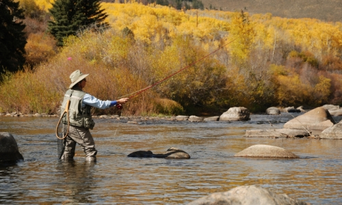 Breckenridge Colorado Fly Fishing Guides
