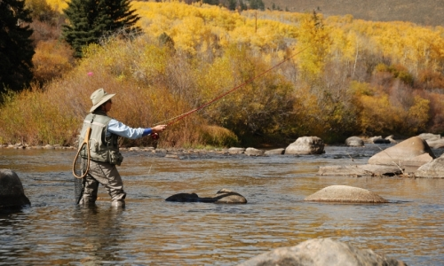 Blue river colorado fly fishing camping boating alltrips for Colorado river fly fishing