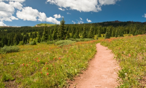Breckenridge Colorado Activities Shrine Pass Hiking Trail