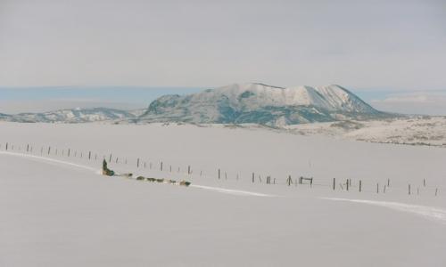 Breckenridge Colorado Dog Sledding