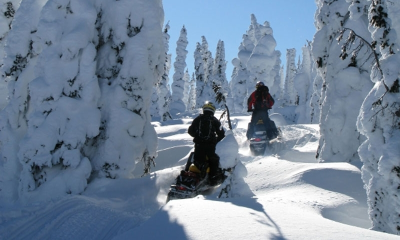 Breckenridge Snowmobiling Snowmobile Rentals Amp Tours